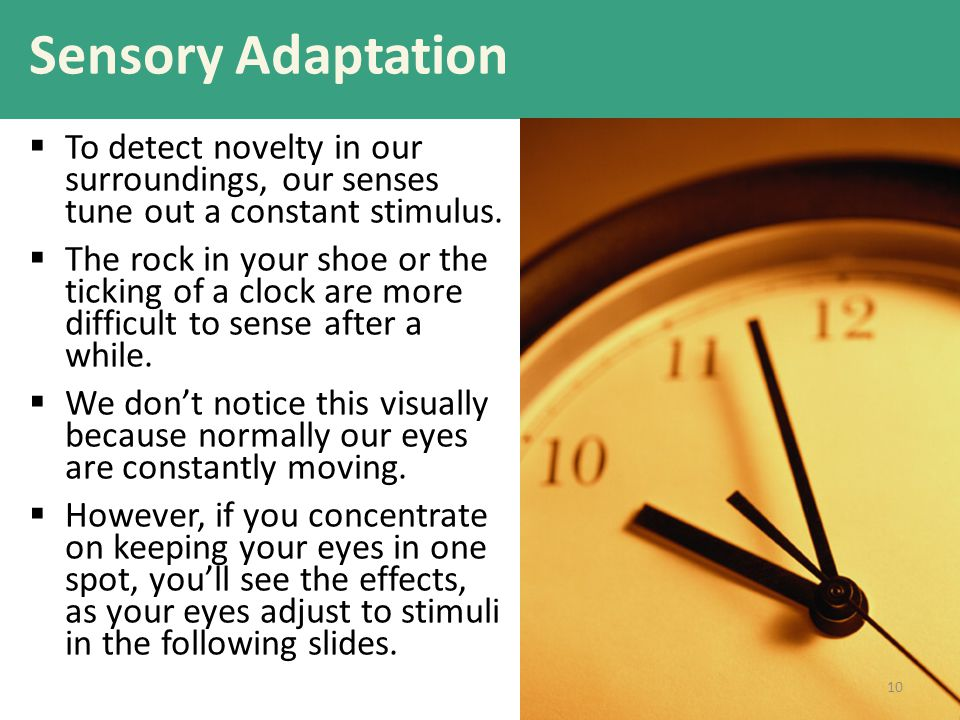 Sensory Adaptation To detect novelty in our surroundings, our senses tune out a constant stimulus.