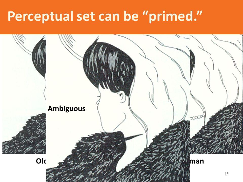 Perceptual set can be primed.