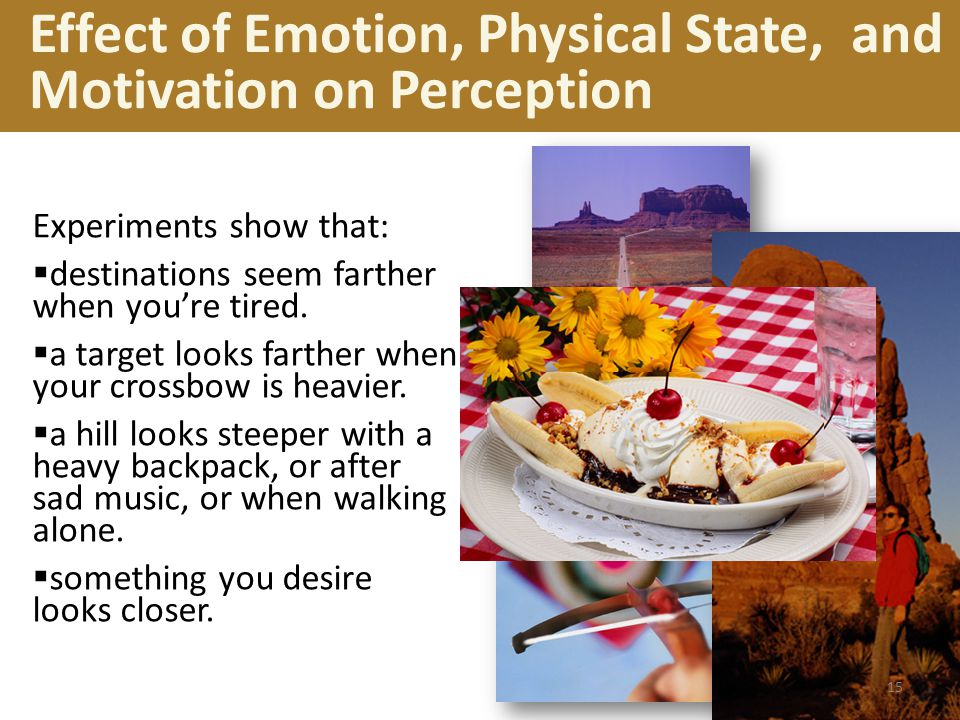 Effect of Emotion, Physical State, and Motivation on Perception