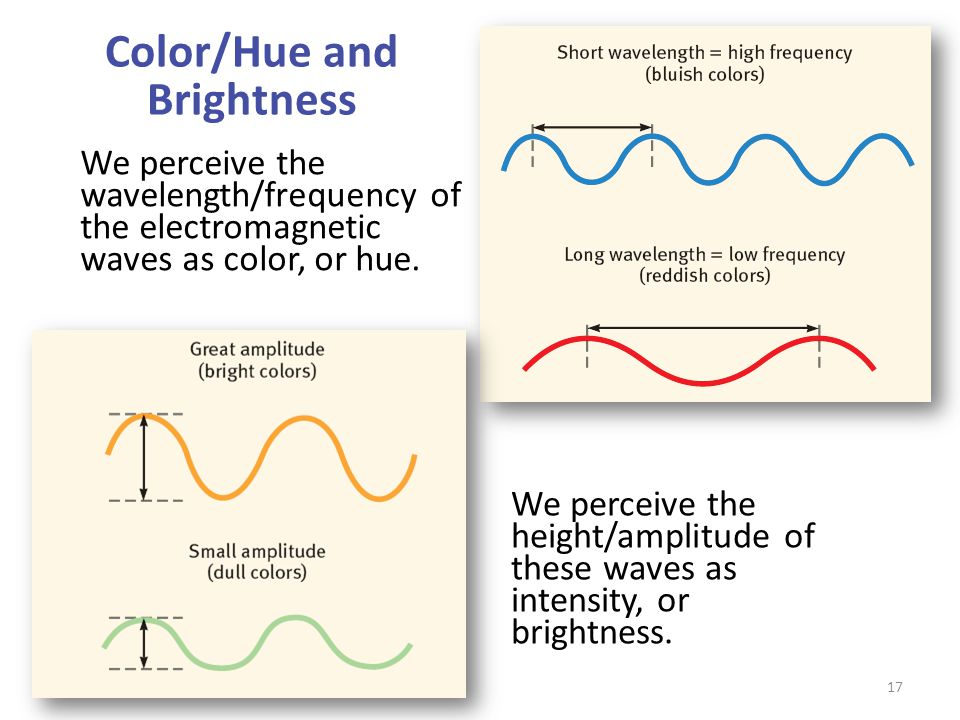 Color/Hue and Brightness