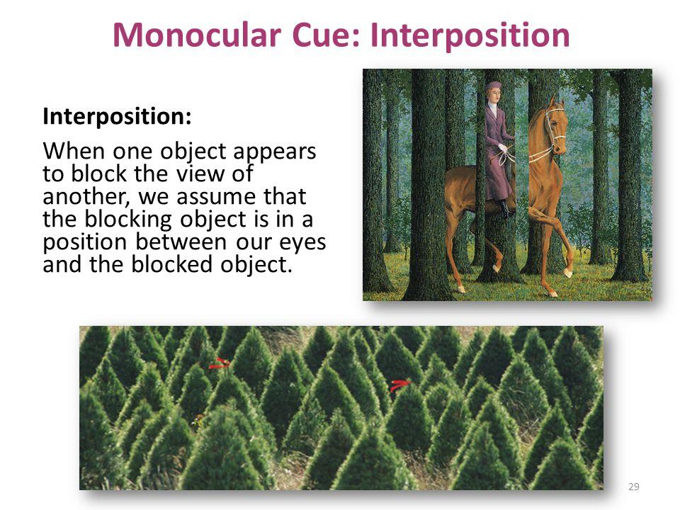 Monocular Cue: Interposition