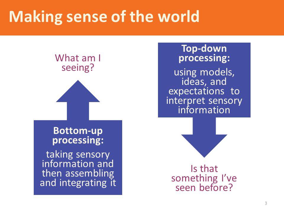 Making sense of the world