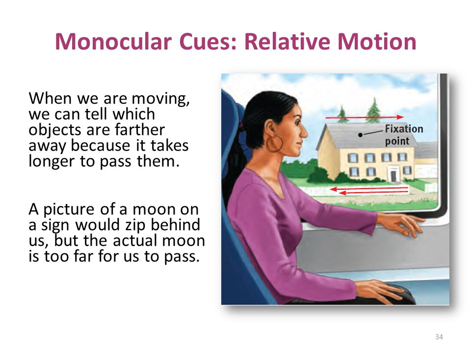 Monocular Cues: Relative Motion