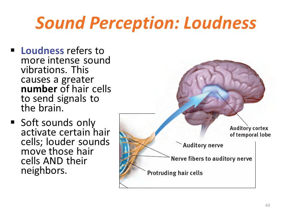 Sound Perception: Loudness