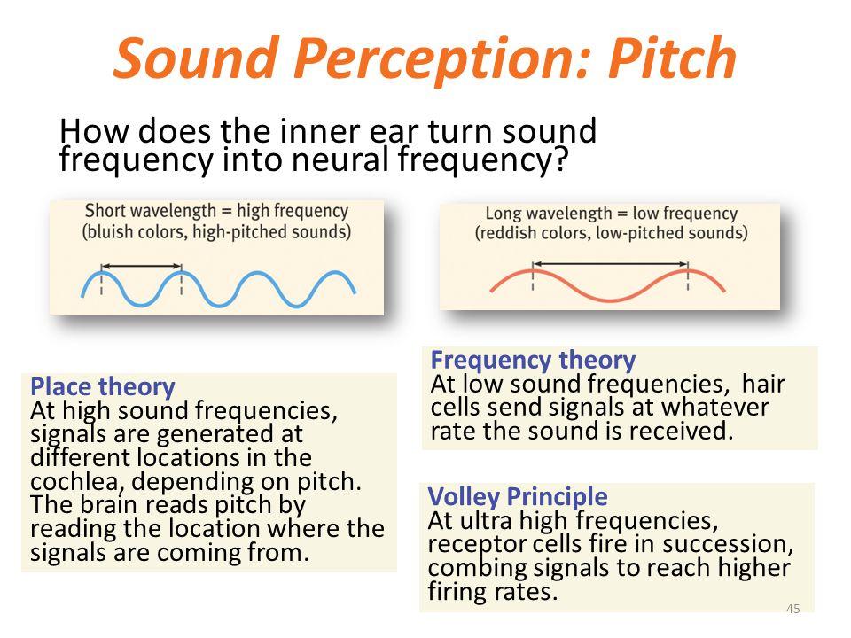 Sound Perception: Pitch