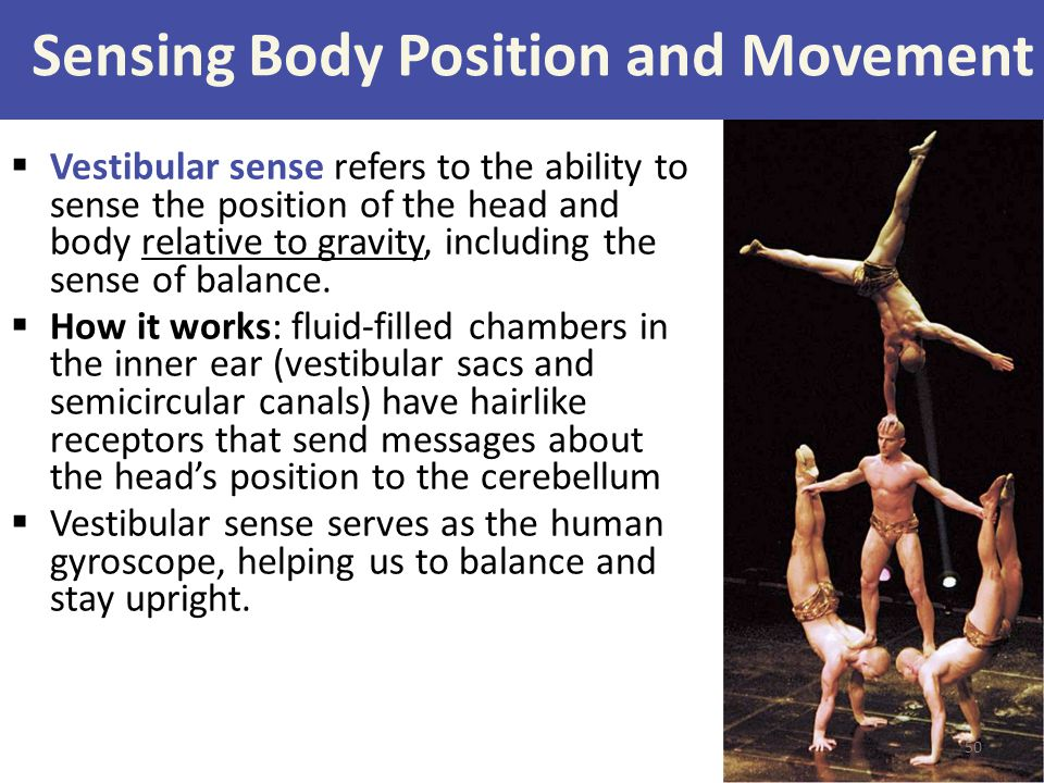 Sensing Body Position and Movement