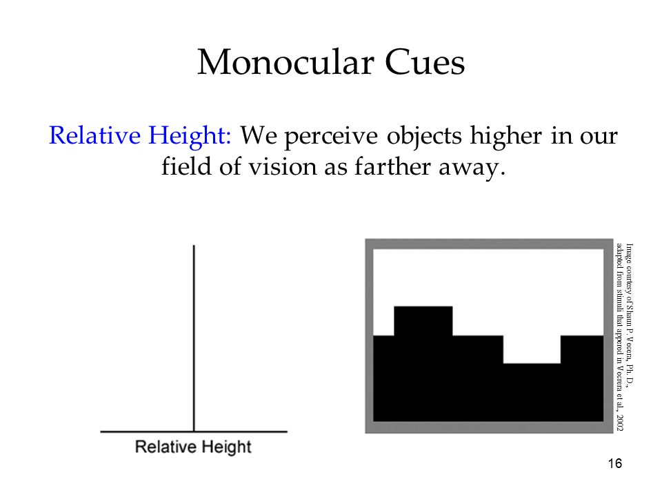 Monocular Cues Relative Height: We perceive objects higher in our field of vision as farther away. Image courtesy of Shaun P. Vecera, Ph. D.,