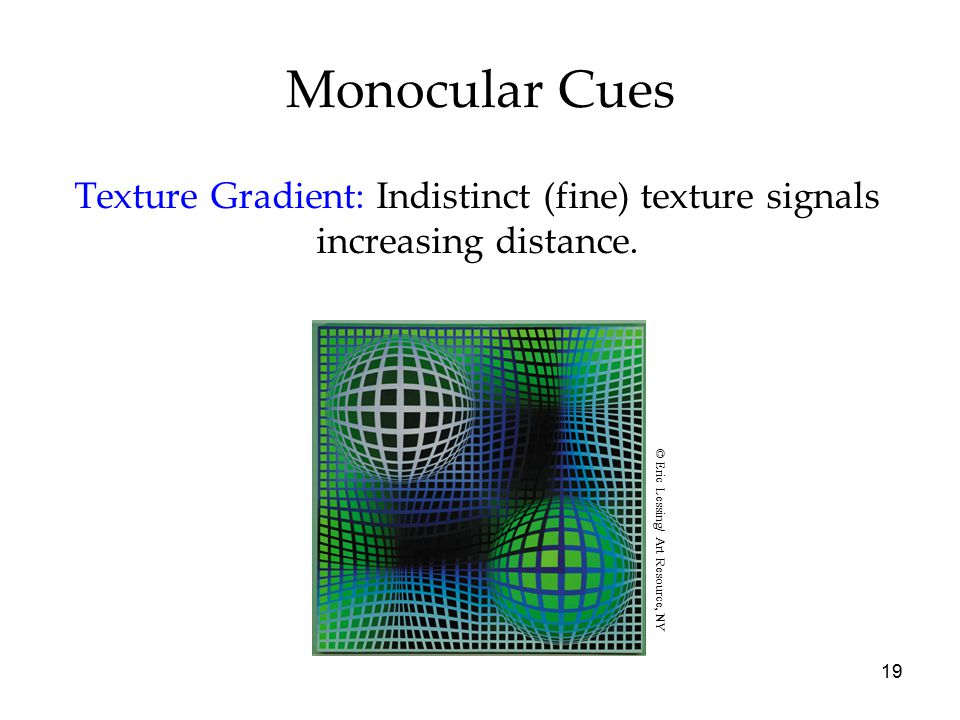 Monocular Cues Texture Gradient: Indistinct (fine) texture signals increasing distance. © Eric Lessing/ Art Resource, NY.