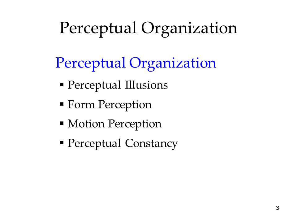 Perceptual Organization | Principle of Perceptual Organization