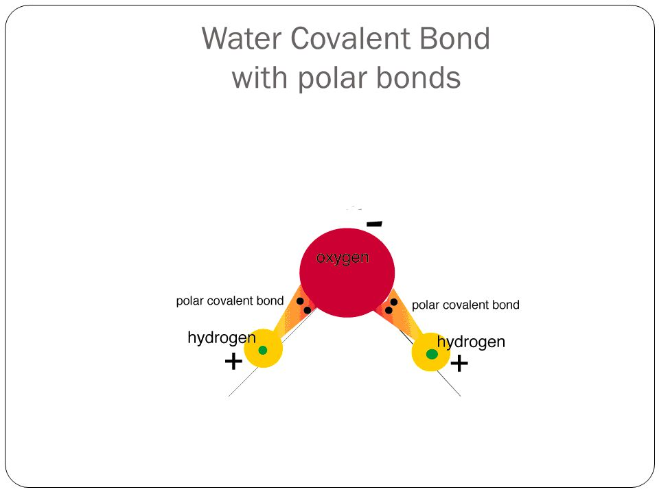 Water Covalent Bond with polar bonds