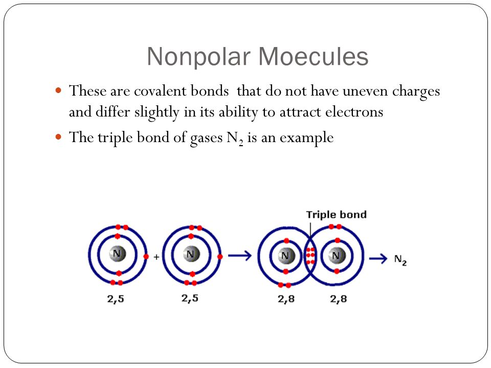 Nonpolar Moecules These are covalent bonds that do not have uneven charges and differ slightly in its ability to attract electrons.