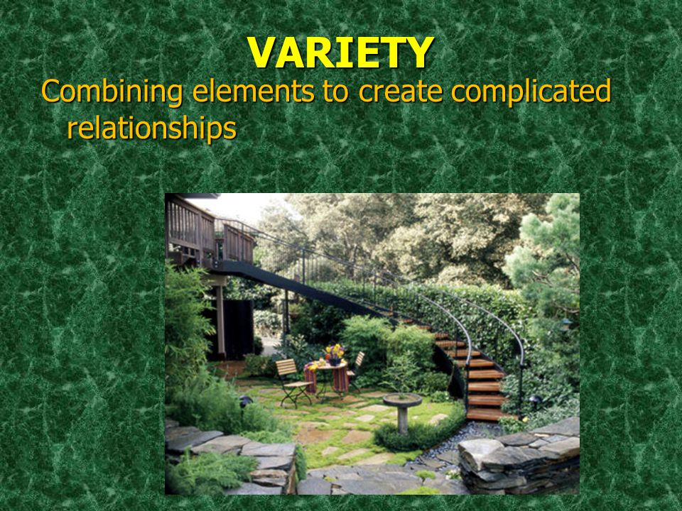 VARIETY Combining elements to create complicated relationships