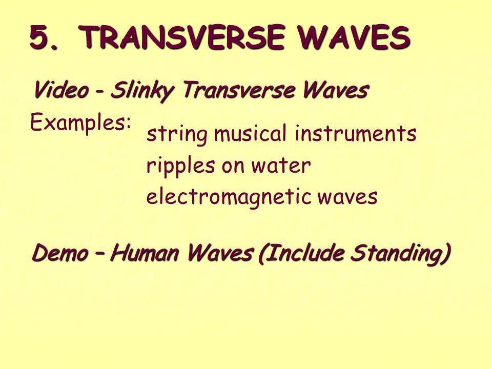 5. TRANSVERSE WAVES Video - Slinky Transverse Waves Examples:
