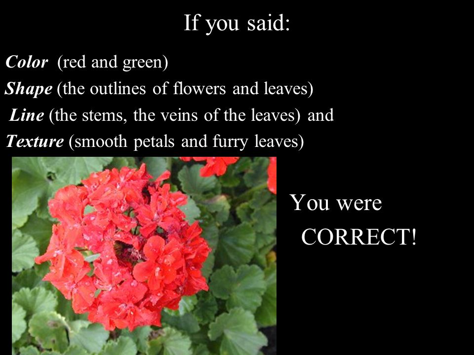 If you said: CORRECT! You were Color (red and green)