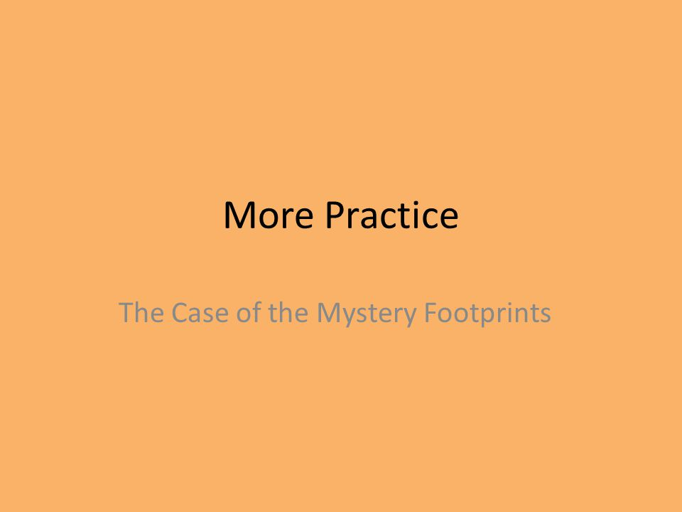 The Case of the Mystery Footprints
