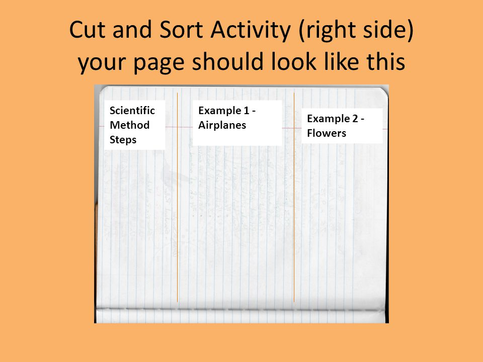 Cut and Sort Activity (right side) your page should look like this