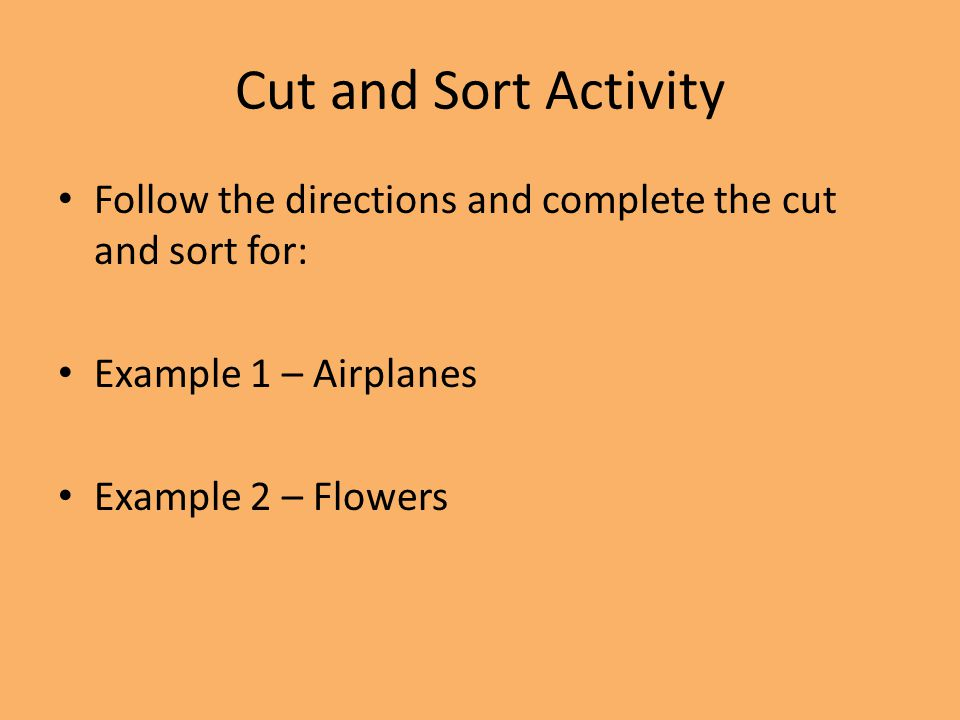 Cut and Sort Activity Follow the directions and complete the cut and sort for: Example 1 – Airplanes.
