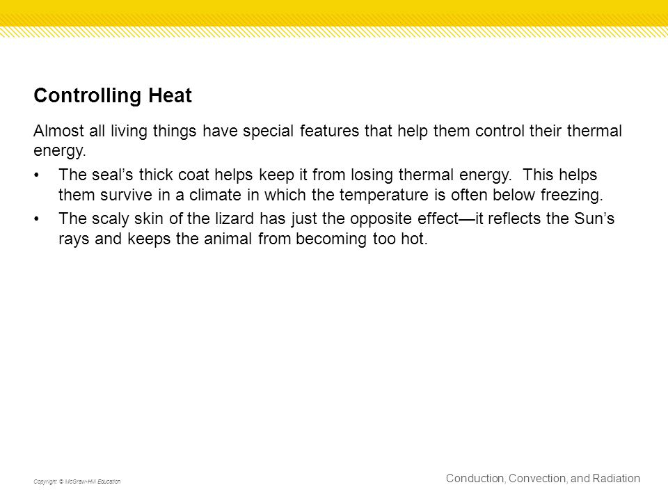 Controlling Heat Almost all living things have special features that help them control their thermal energy.