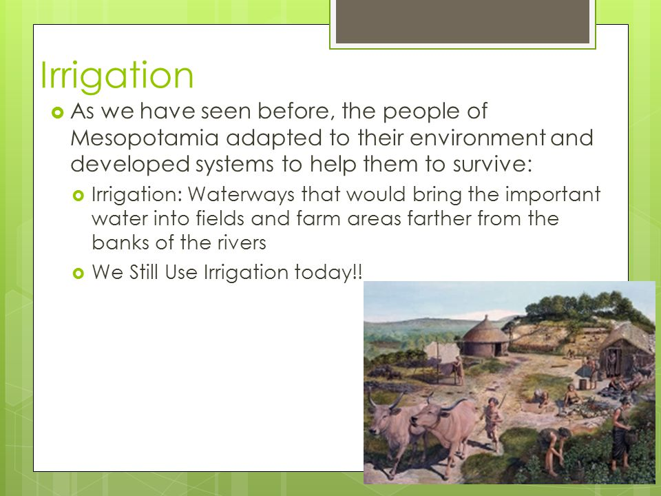Irrigation As we have seen before, the people of Mesopotamia adapted to their environment and developed systems to help them to survive: