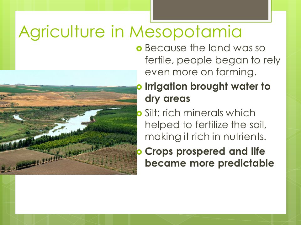 Agriculture in Mesopotamia