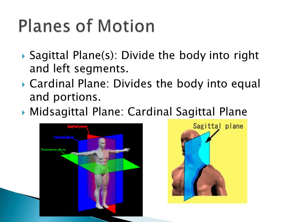 Planes of Motion Sagittal Plane(s): Divide the body into right and left segments. Cardinal Plane: Divides the body into equal and portions.