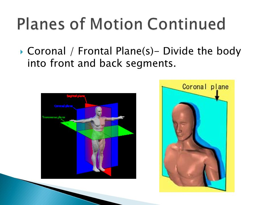 Planes of Motion Continued