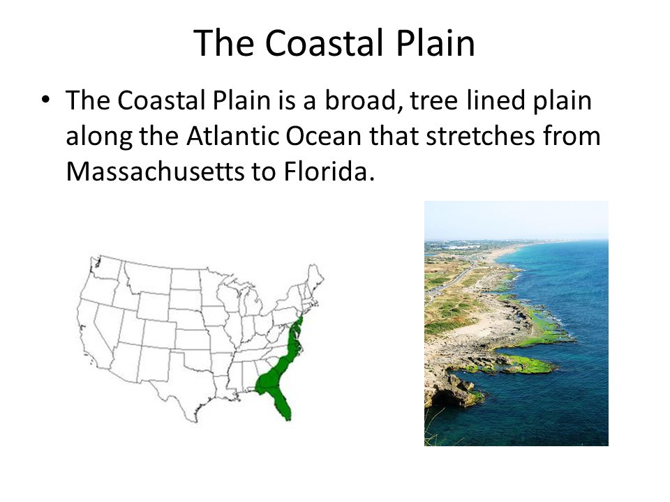 The Coastal Plain The Coastal Plain is a broad, tree lined plain along the Atlantic Ocean that stretches from Massachusetts to Florida.