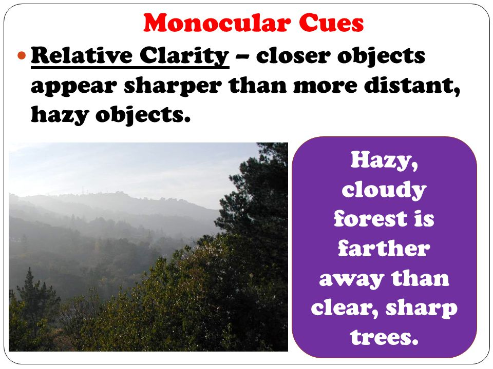 Hazy, cloudy forest is farther away than clear, sharp trees.