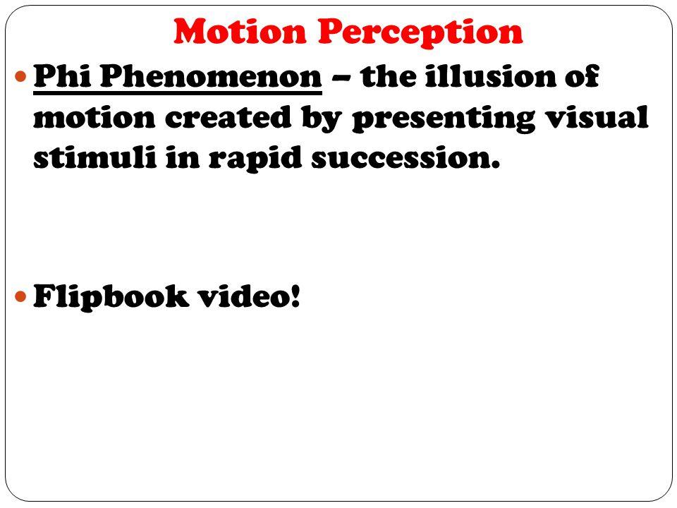 Motion Perception Phi Phenomenon – the illusion of motion created by presenting visual stimuli in rapid succession.