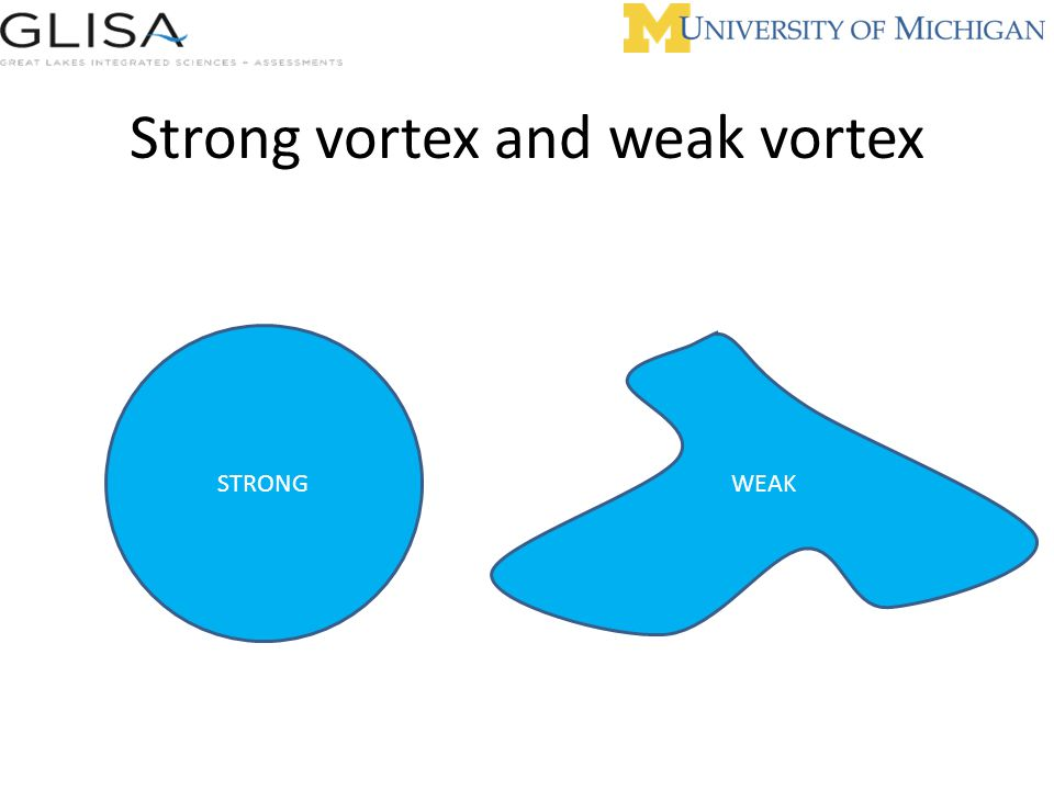 Strong vortex and weak vortex