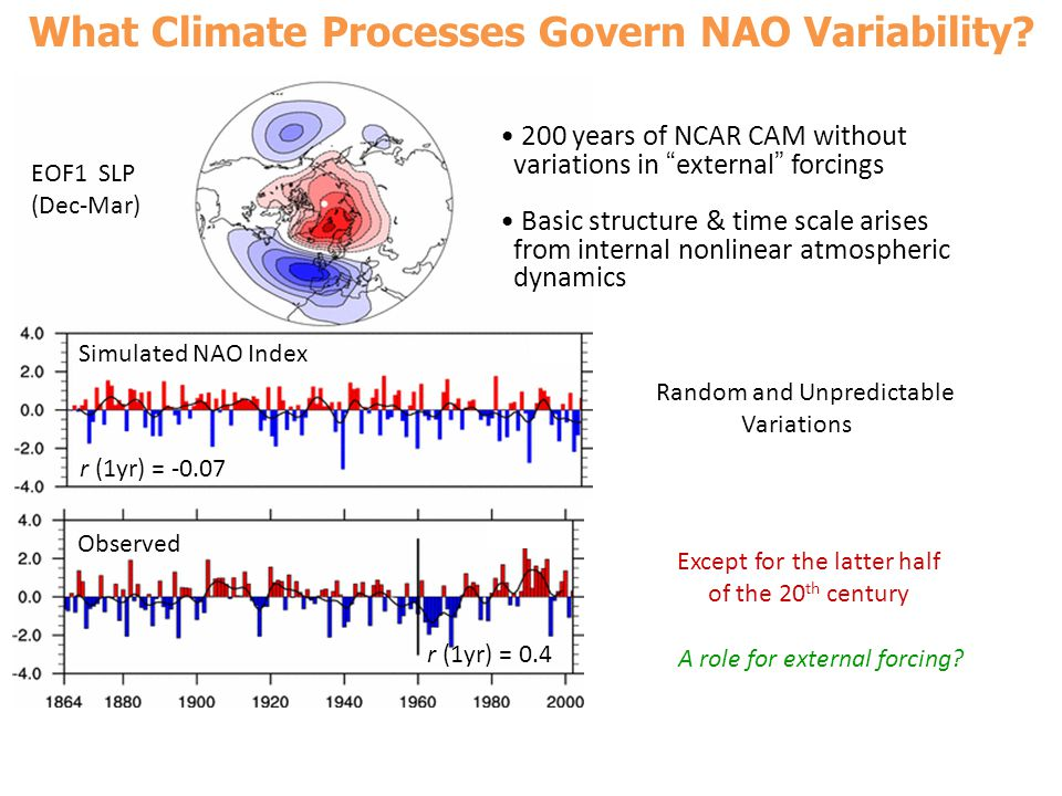 What Climate Processes Govern NAO Variability