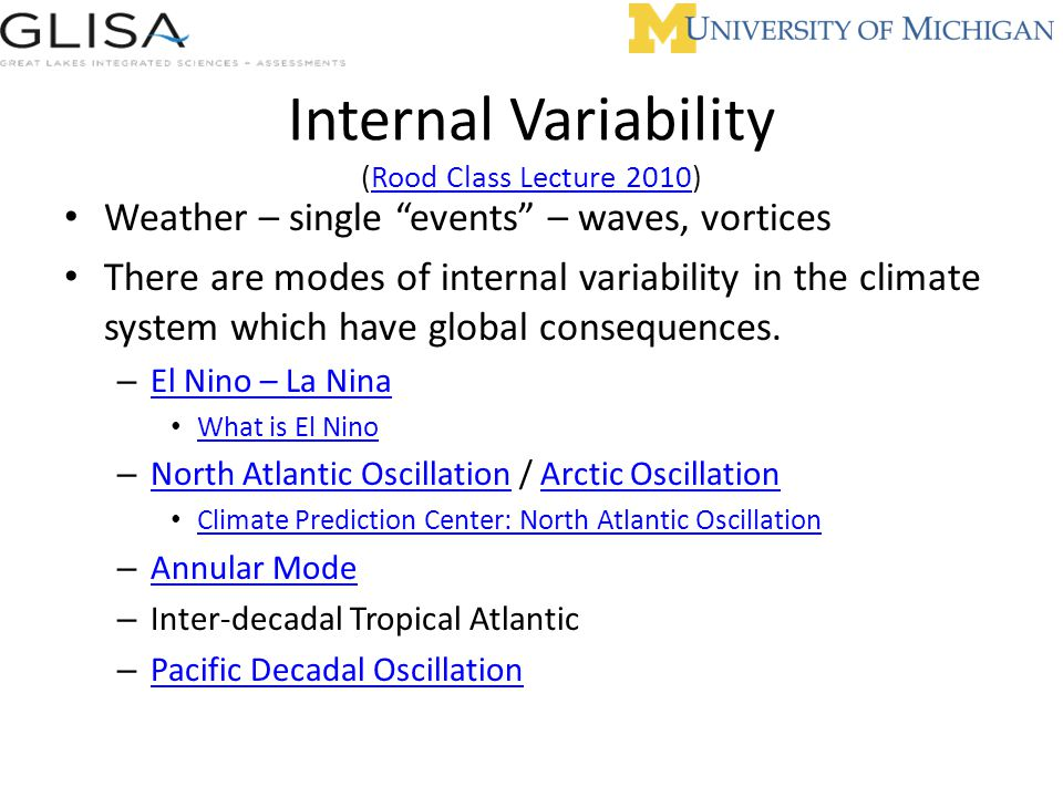 Internal Variability (Rood Class Lecture 2010)