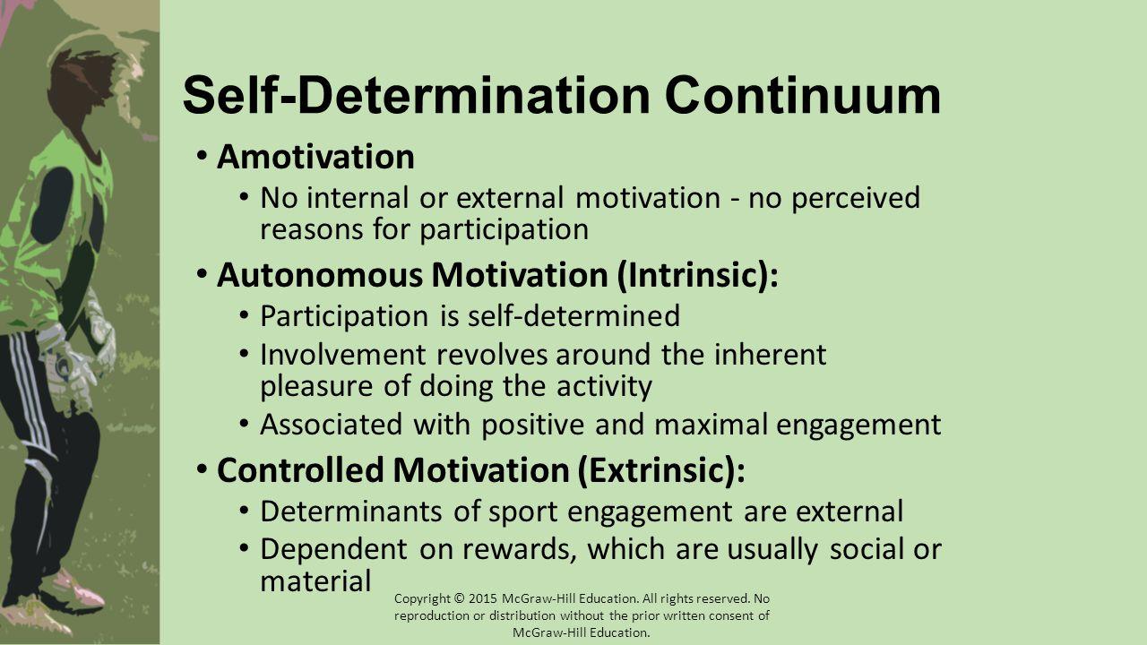 Self-Determination Continuum