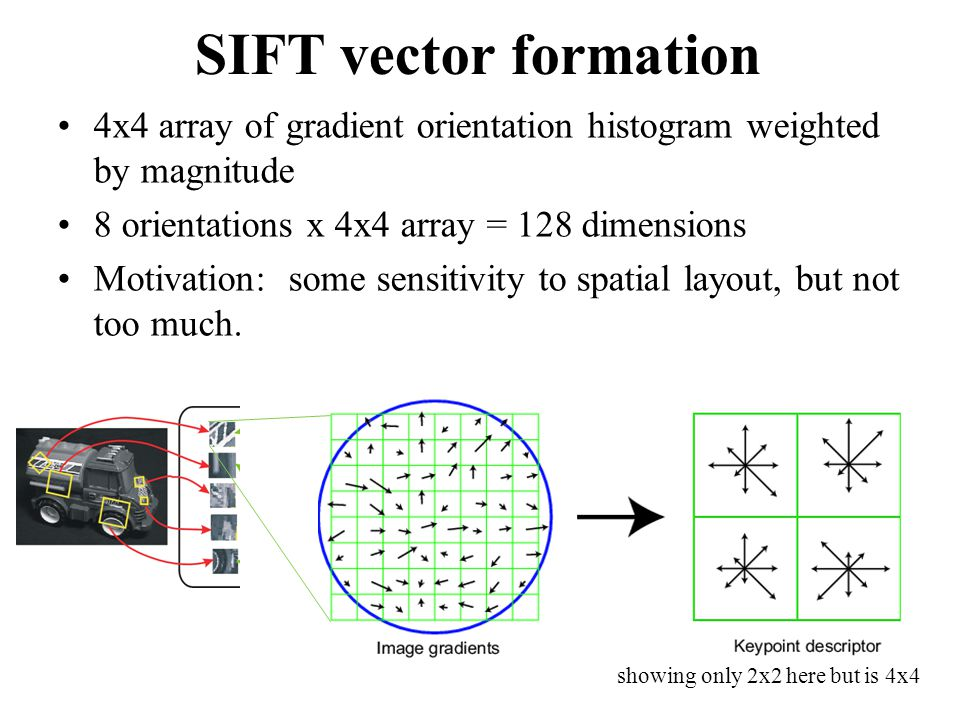 SIFT vector formation 4x4 array of gradient orientation histogram weighted by magnitude. 8 orientations x 4x4 array = 128 dimensions.