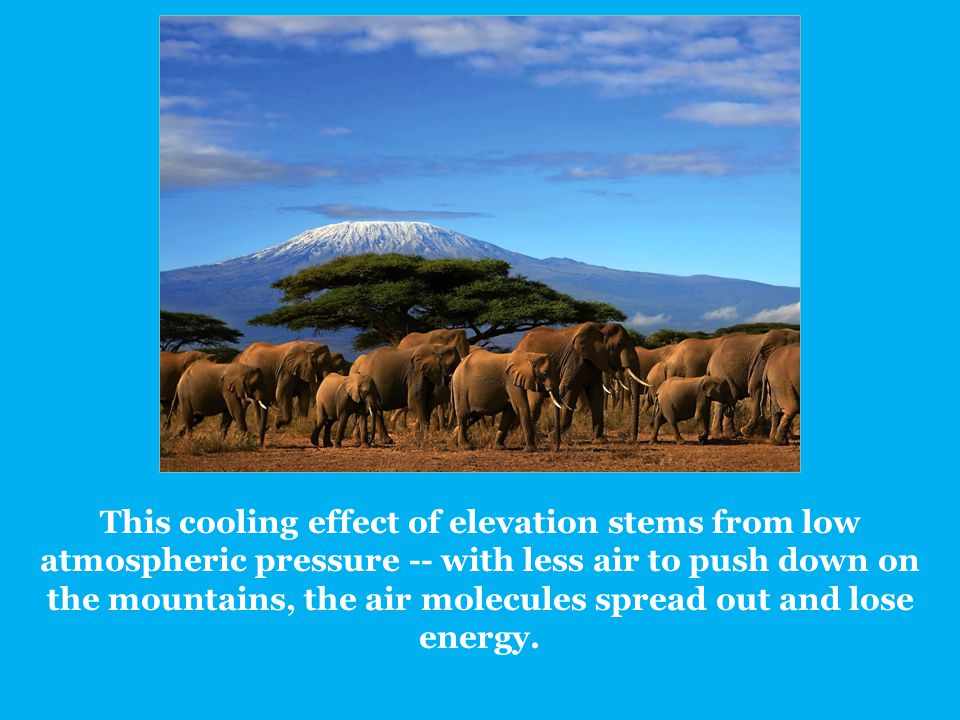 This cooling effect of elevation stems from low atmospheric pressure -- with less air to push down on the mountains, the air molecules spread out and lose energy.