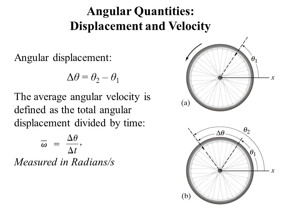 Angular Quantities: Displacement and Velocity