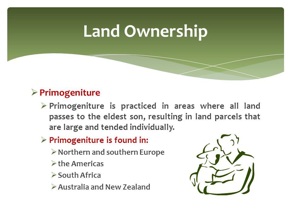 Land Ownership Primogeniture
