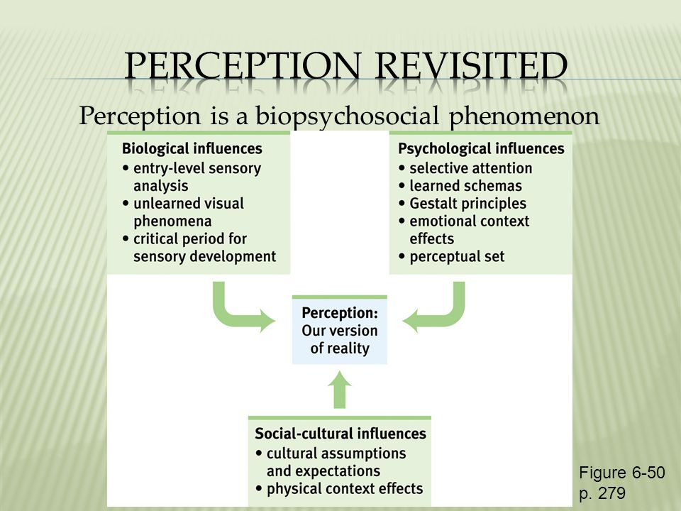 Perception is a biopsychosocial phenomenon