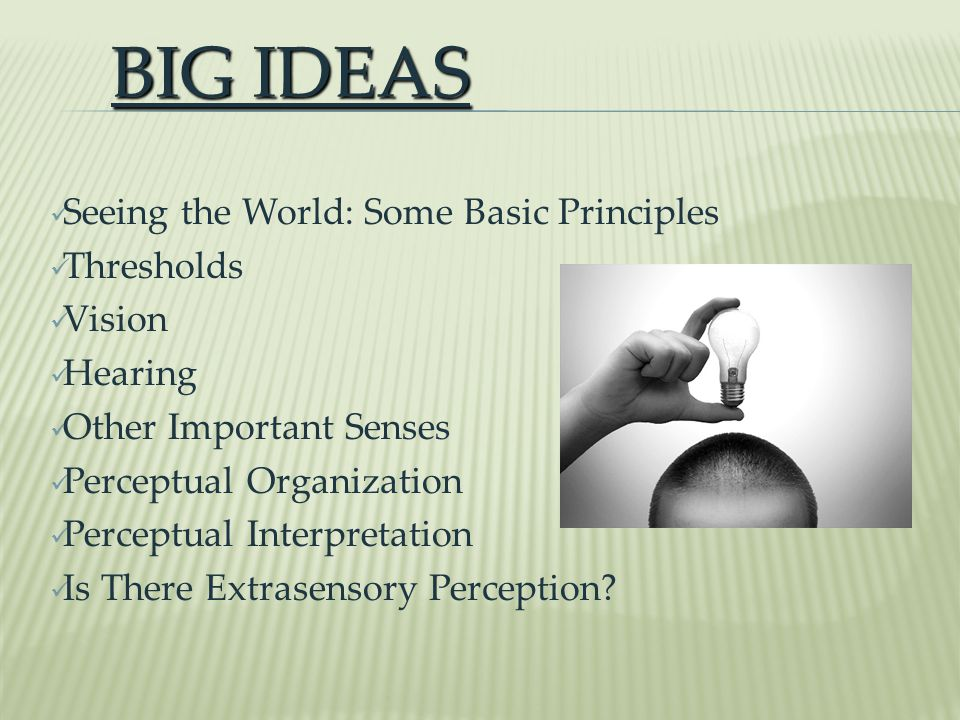 BIG IDEAS Seeing the World: Some Basic Principles Thresholds Vision