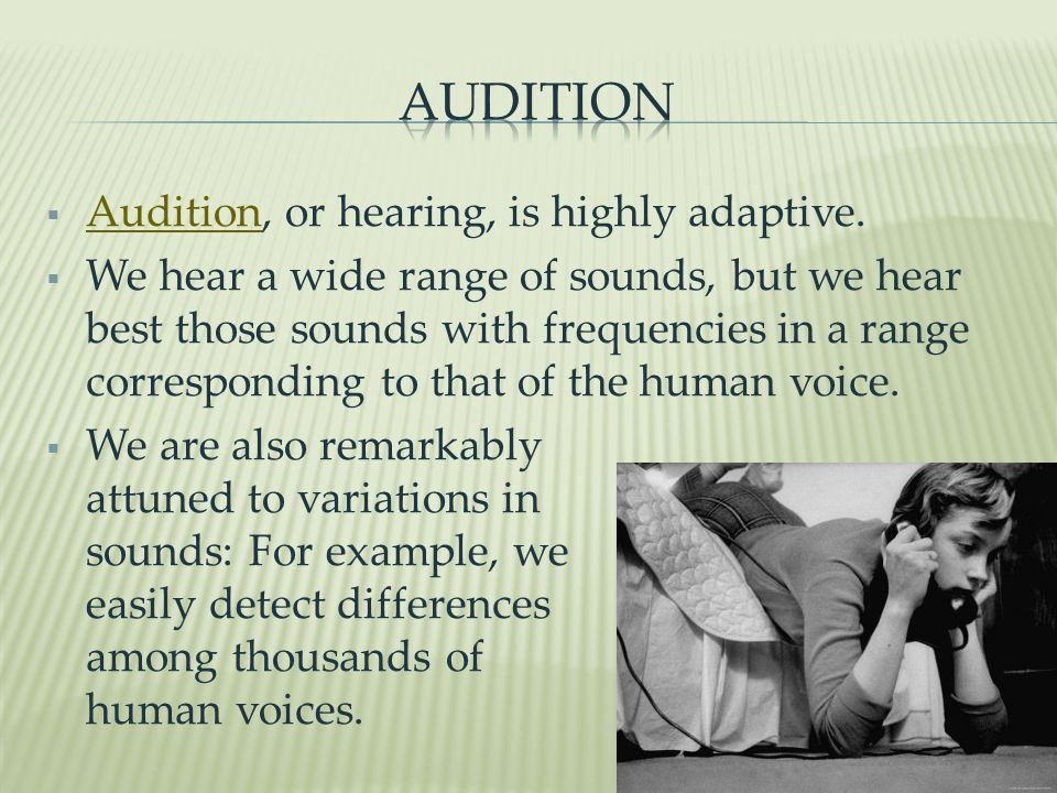 Audition Audition, or hearing, is highly adaptive.