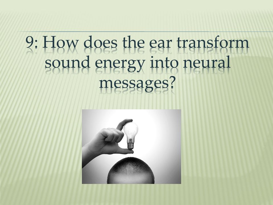 9: How does the ear transform sound energy into neural messages