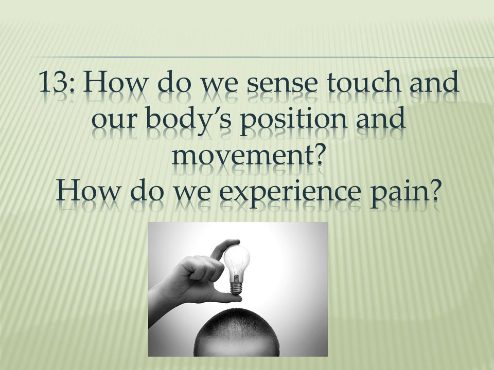 13: How do we sense touch and our body's position and movement