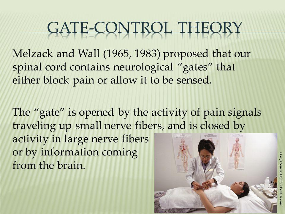 Gate-Control Theory