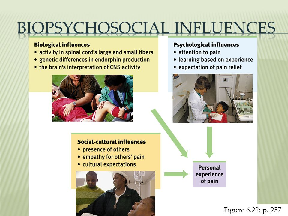 Biopsychosocial Influences
