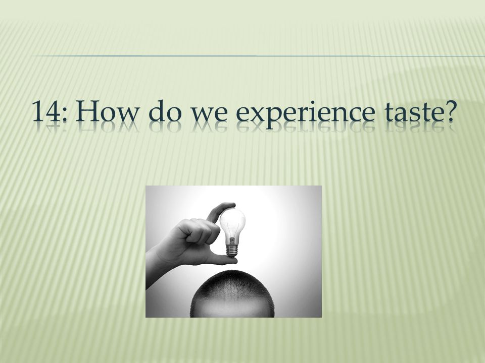 14: How do we experience taste