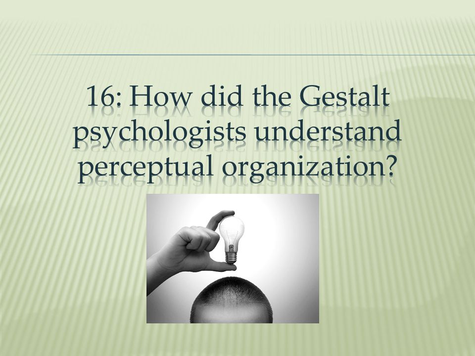 16: How did the Gestalt psychologists understand perceptual organization