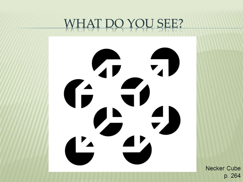 What Do You See Necker Cube p. 264