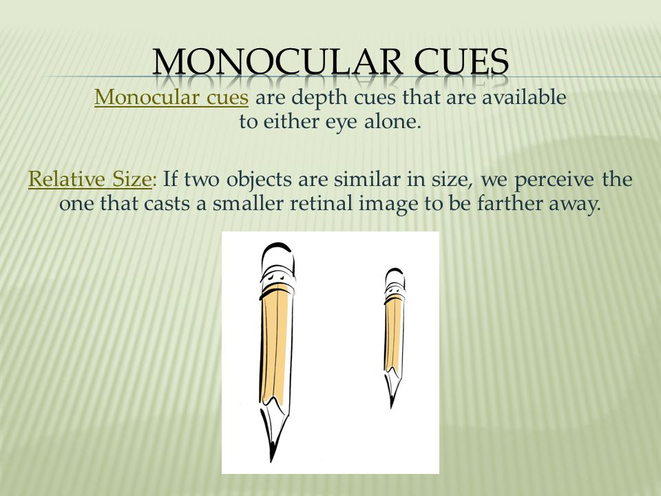 Monocular cues are depth cues that are available to either eye alone.