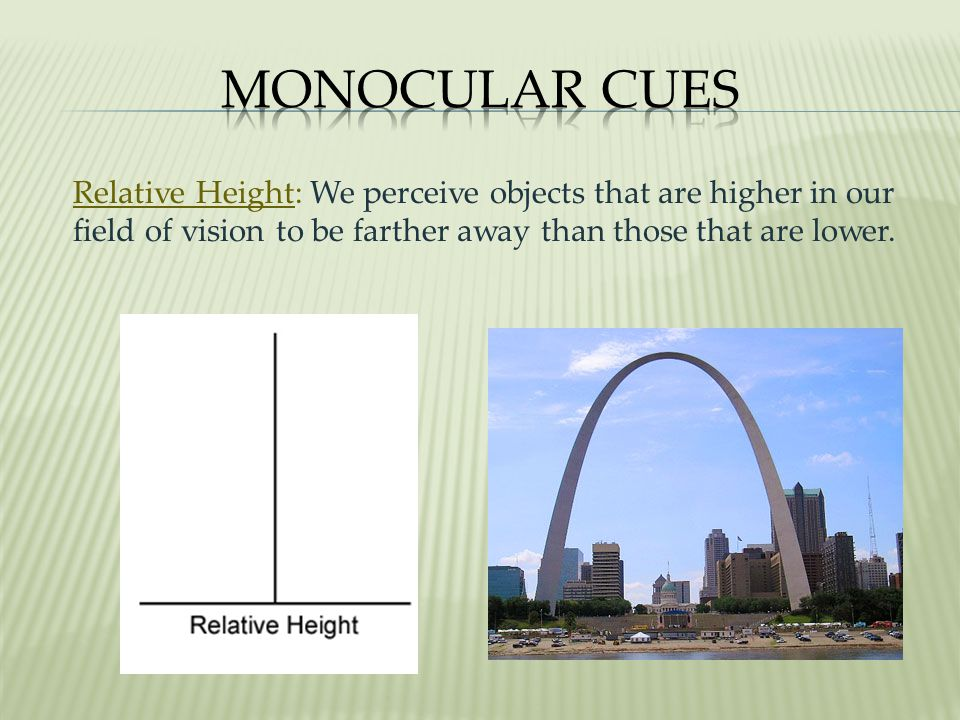 Monocular Cues Relative Height: We perceive objects that are higher in our field of vision to be farther away than those that are lower.