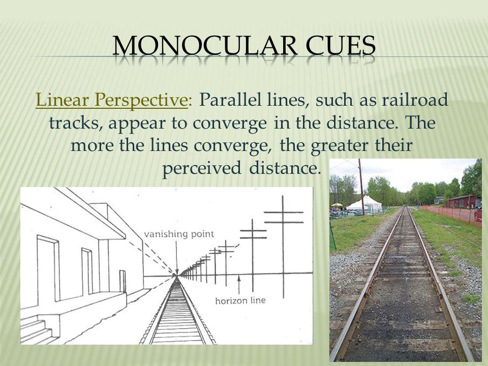 Monocular Cues